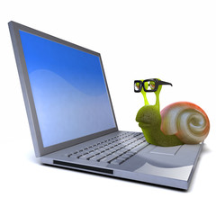 3d Snail sits on laptop...because he can