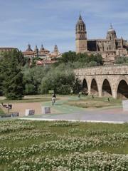 Catedral Nueva de Salamanca desde el puente romano