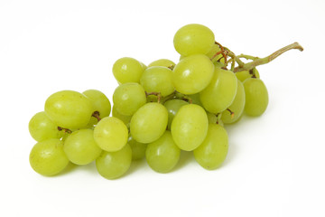 Weintrauben Fototapete