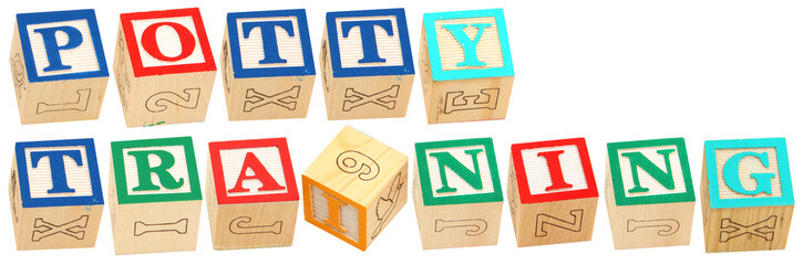 Alphabet Blocks POTTY TRAINING