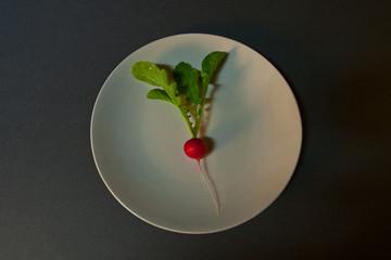 Raddish on a Plate