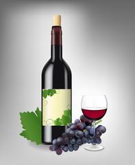 Red wine set. Vector illustration.
