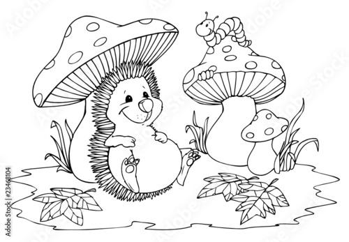 Igel, Pilze, Raupe, Herbst, Wald, Pilz\