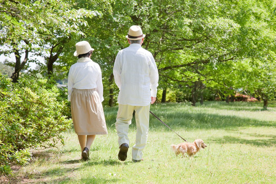 犬と散歩する老夫婦