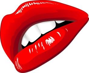 Labbra Sensuali-Sensual Lips-Vector