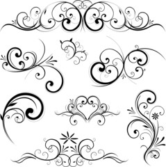 Vector scroll ornament