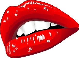 Labbra Sensuali con gocce d'acqua-Wet Sensual Lips-Vector