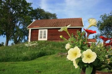 typisches Schwedenhaus