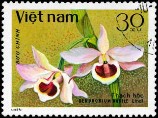 VIETNAM - CIRCA 1979 Dendrobium