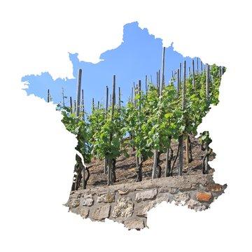 Viticulture française