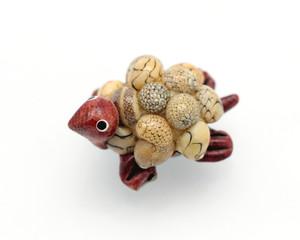 tartaruga in miniatura