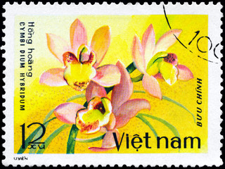 VIETNAM - CIRCA 1979 Cymbidium