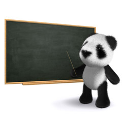 3d Teddy points at the chalkboard