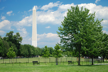 Fotomurales - Washington Monument in Washington DC