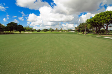 Newly Aerated Golf Course Putting Green