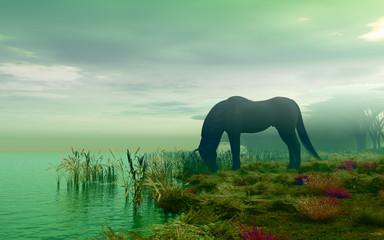 horse near river
