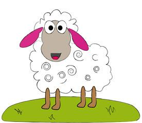 Schaf lacht dich an