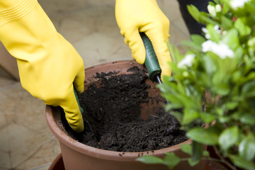 People doing garden work with gloves and tools