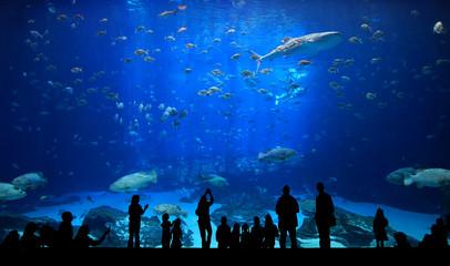 Large Aquarium - People Silhouettes