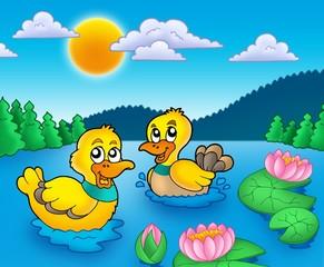 Foto op Plexiglas Rivier, meer Two ducks and water lillies