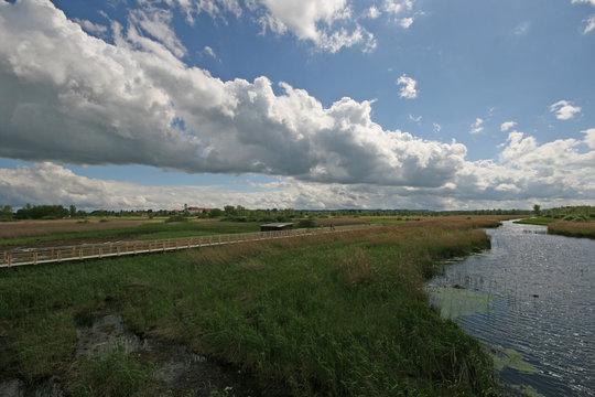 Federsee-Kanal 3464