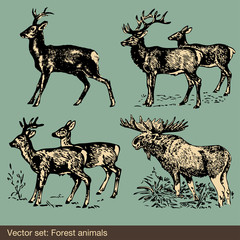 Stag and elk vector background