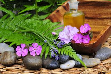 Wellness Sauna Spa