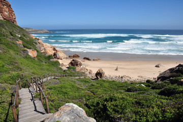 Garden Poster South Africa South Africa – Robberg Nature Reserve