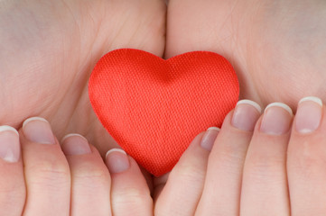 Heart in female hands isolated on white background