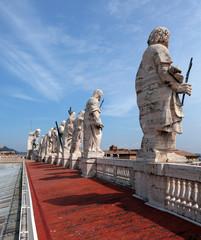 Rome, Saint Peter roof, 2010