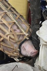 cambogia mercato