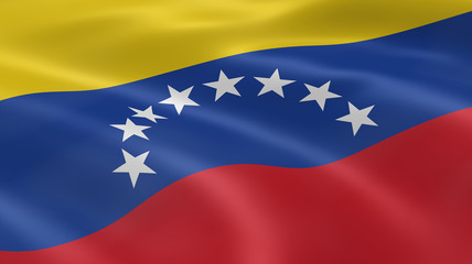 Venezuelan flag in the wind