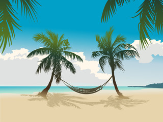 Tropical beach, coconut palms, hammock
