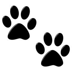 3D Cat Foot Prints