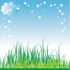 Spring grass background.
