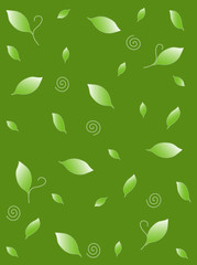 Background with fresh green leafs texture