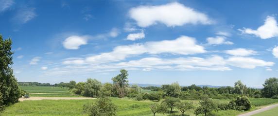 Rheintal - Panorama