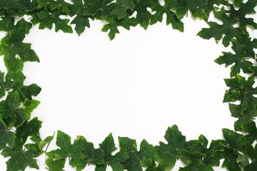 leaf fame