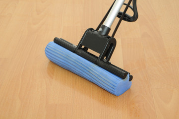 Sponge Mop On Wooden Floor