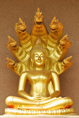 the image of Buddha sit