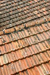 tetto di tegole rosse in cotto