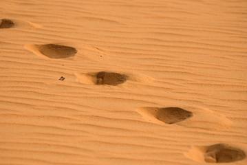 Footprint on a sand dune