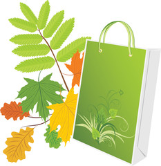Package on the leafy background. Vector