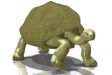 Glassy Gold Tortoise