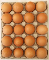 20 eggs