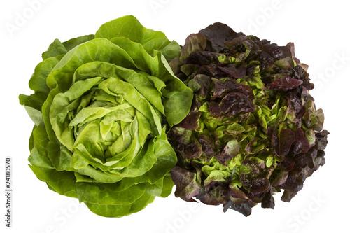 Grüner Salat Stockfotos Und Lizenzfreie Bilder Auf Fotoliacom