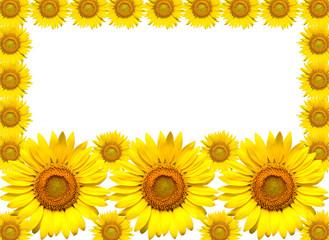 ヒマワリの花のフレーム