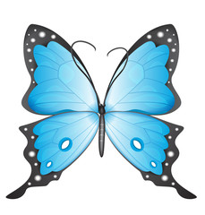 Blue butterfly. eps10