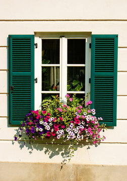 Flowerbox on a window.