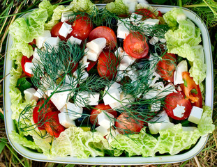 Dish with fresh vegetables